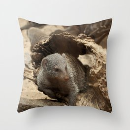 Maxin' N Relaxin' Throw Pillow