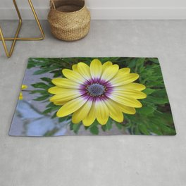 Pretty as Sunshine Rug