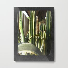 Cactus Garden Blank P4F0 Metal Print