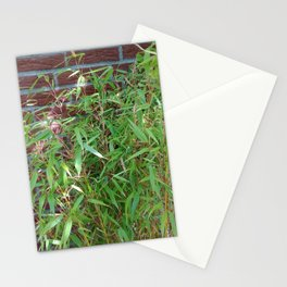 Garden Bamboo Plant Stationery Cards