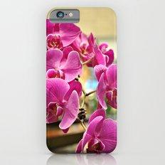 Orchids in Singapore iPhone 6s Slim Case