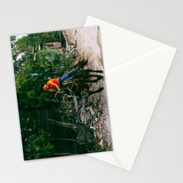 Nicaraguan riding. Stationery Cards