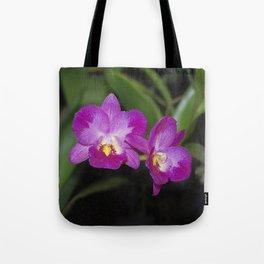 Magnificent Magenta Orchid - Ctna Capri Tote Bag