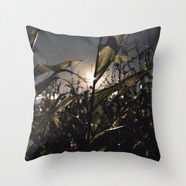 Corn Field 27 Throw Pillow