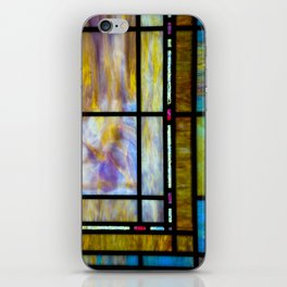 All The Colors Held Together iPhone Skin