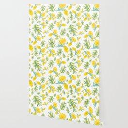 Australian Wattle Flower Pattern Wallpaper