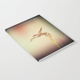 FunkyFresh05 Notebook