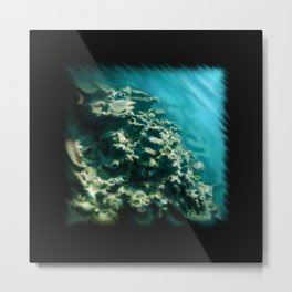 Tunnelvisions/DeadCoralReef2 Metal Print