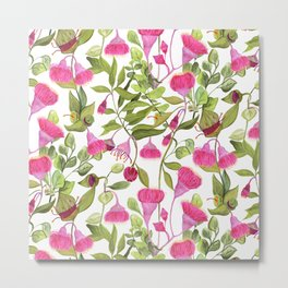 Eucalyptus Flowers Metal Print