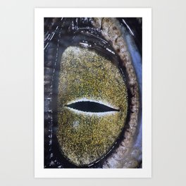 Oeil de crocodile Art Print