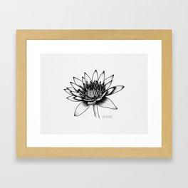 Open Lotus Flower Framed Art Print