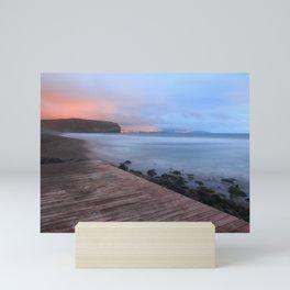 Beach at sunset Mini Art Print