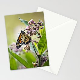 Monarch Butterfly on Flower Stationery Cards