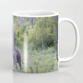 elephant picture one Coffee Mug