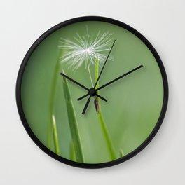 dandy seed Wall Clock