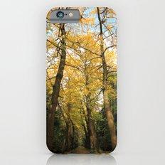 Ginkgo biloba trees Slim Case iPhone 6s