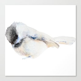 Watercolor Coal Tit Painting Canvas Print