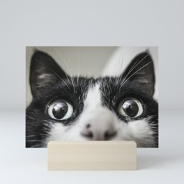 Cat Mini Art Print