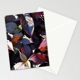 Pattern #10 Stationery Cards