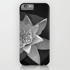 Nature star iPhone 6s Slim Case