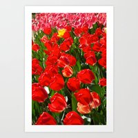 Tulips in Paris Art Print