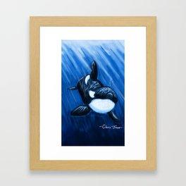 Orca Framed Art Print