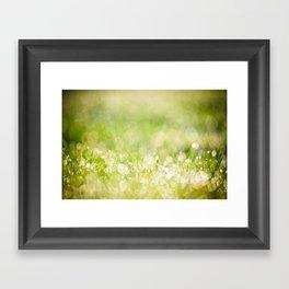 morning dew no.2 Framed Art Print