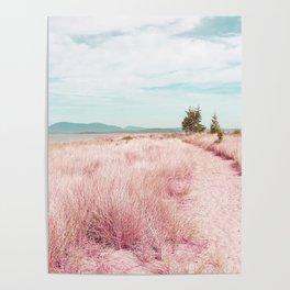 Coastal trail - blush Poster