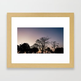 Morning Bell Framed Art Print