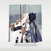 pigeon Shower Curtains featuring Pigeon by Toni Tylicki