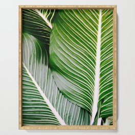 Big Leaves - Tropical Nature Photography Serving Tray