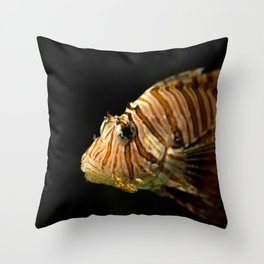 Lion Fish in the Spot Light Throw Pillow