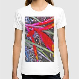 Bromeliad in the Cathedral T-shirt