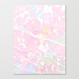 Pastel Candy Pollock marble Canvas Print