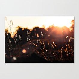 Picture Perfect Morning   Sunrise - Grand Canyon National Park, Arizona Canvas Print