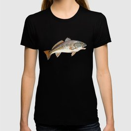 Redfish | Red Drum T-shirt