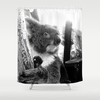 koala Shower Curtains featuring Koala by Alan Hogan
