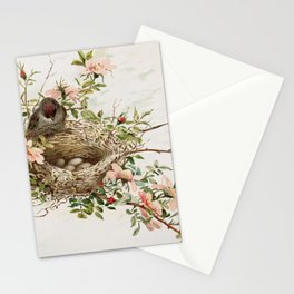 Vintage Bird with Eggs in Nest Stationery Cards