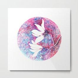 First magnolias Metal Print