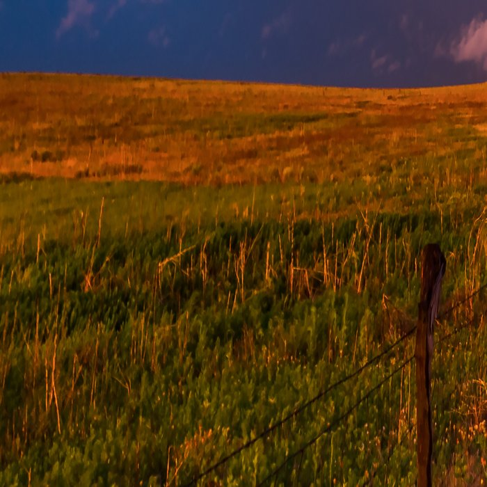 Far and Away - Lone Tree Under Colorful Sky in Oklahoma Panhandle Leggings
