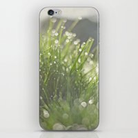 grass iPhone & iPod Skins featuring Grass by Pure Nature Photos