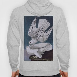 Iceland or Jer Falcon, Plate 366 of Birds of America by John James Audubon Hoody