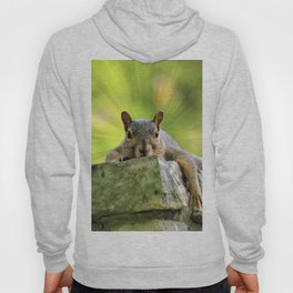 Relaxed Squirrel Hoody