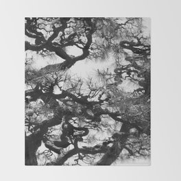 Tree of Japan (black and white edit) Throw Blanket