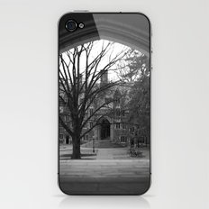 Princeton iPhone & iPod Skin