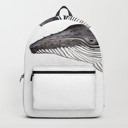North Atlantic Humpback whale Backpack