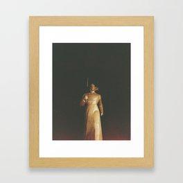 Stavropol Hero Framed Art Print