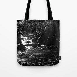 Shadow of The Mountain Tote Bag