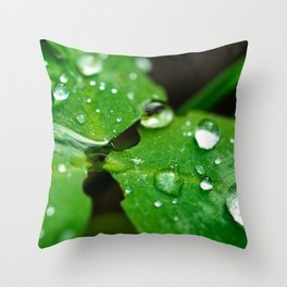 Drop on leaf Throw Pillow