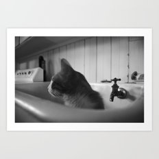 Oliver Suggests a Bath Art Print